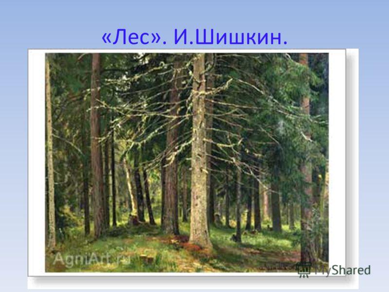 «Лес». И.Шишкин.