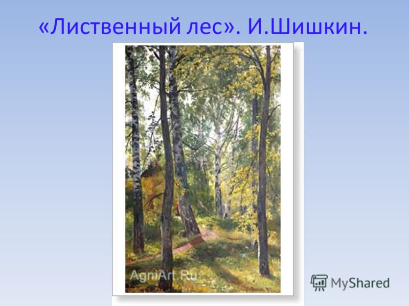 «Лиственный лес». И.Шишкин.