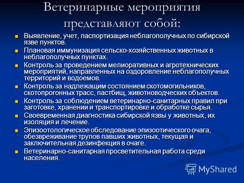 Ветеринарные мероприятия представляют собой: Выявление, учет, паспортизация неблагополучных по сибирской язве пунктов. Выявление, учет, паспортизация неблагополучных по сибирской язве пунктов. Плановая иммунизация сельско-хозяйственных животных в неб