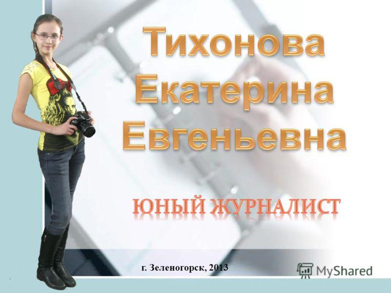 г. Зеленогорск, 2013