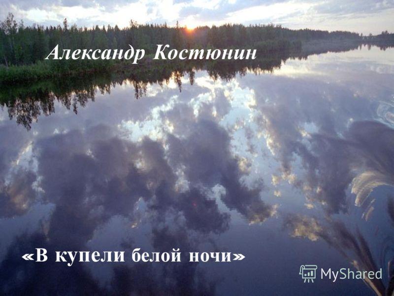 Александр Костюнин « В купели белой ночи » Александр Костюнин