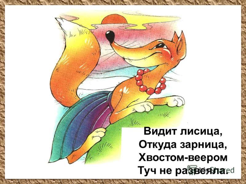 Видит лисица, Откуда зарница, Хвостом-веером Туч не развеяла.