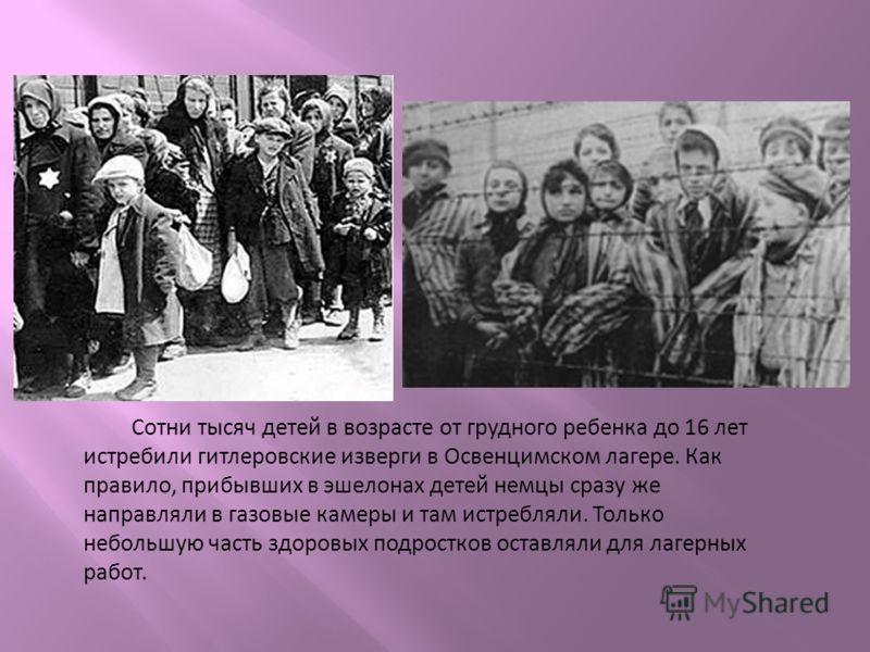 Сотни тысяч детей в возрасте от грудного ребенка до 16 лет истребили гитлеровские изверги в Освенцимском лагере. Как правило, прибывших в эшелонах детей немцы сразу же направляли в газовые камеры и там истребляли. Только небольшую часть здоровых подр