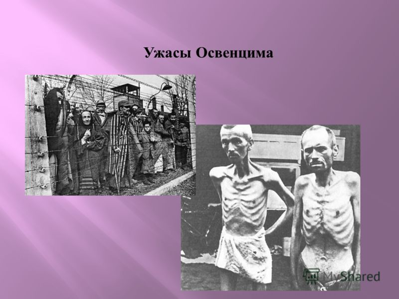 Ужасы Освенцима