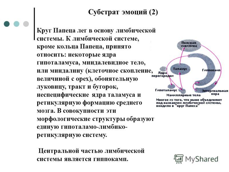 Круг Папеца лег в основу лимбической системы. К лимбической системе, кроме кольца Папеца, принято относить: некоторые ядра гипоталамуса, миндалевидное тело, или миндалину (клеточное скопление, величиной с орех), обонятельную луковицу, тракт и бугорок