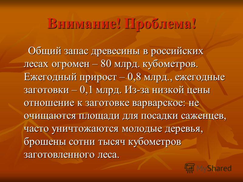 Внимание! Проблема! Общий запас древесины в российских лесах огромен – 80 млрд. кубометров. Ежегодный прирост – 0,8 млрд., ежегодные заготовки – 0,1 млрд. Из-за низкой цены отношение к заготовке варварское: не очищаются площади для посадки саженцев,