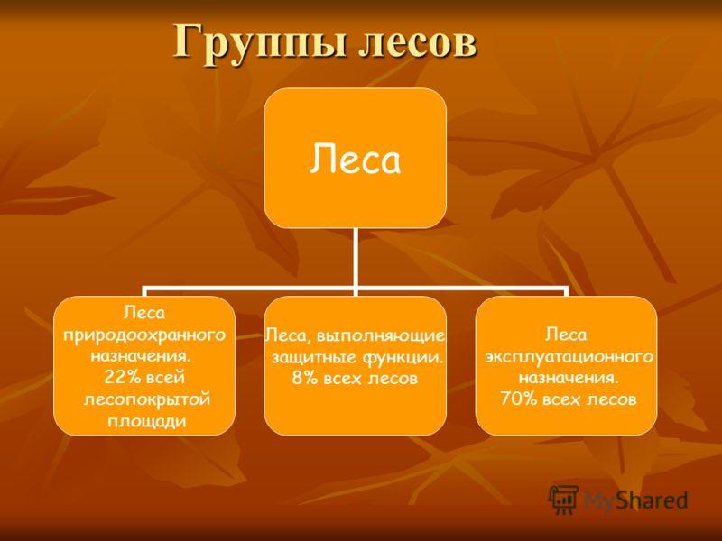 Группы лесов Леса природоохранного назначения. 22% всей лесопокрытой площади Леса, выполняющие защитные функции. 8% всех лесов Леса эксплуатационного назначения. 70% всех лесов