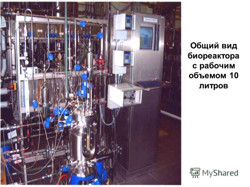 Общий вид биореактора с рабочим объемом 10 литров