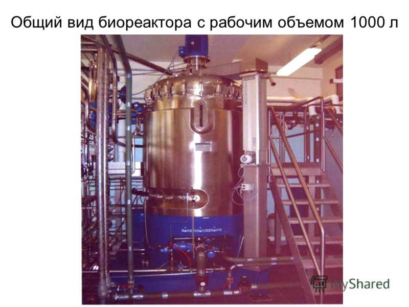 Общий вид биореактора с рабочим объемом 1000 л
