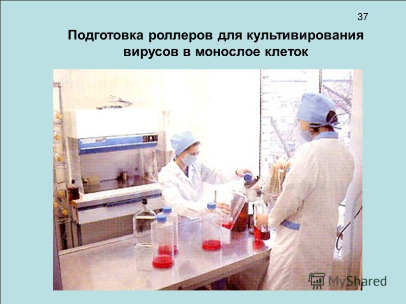 Подготовка роллеров для культивирования вирусов в монослое клеток 37