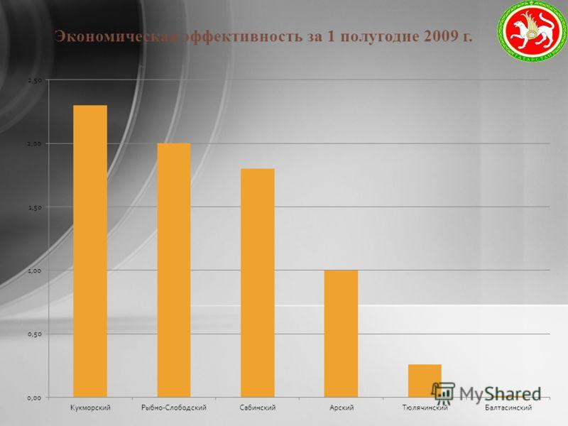 Экономическая эффективность за 1 полугодие 2009 г.
