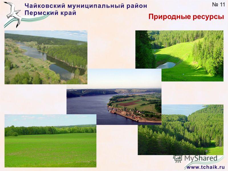Природные ресурсы 11
