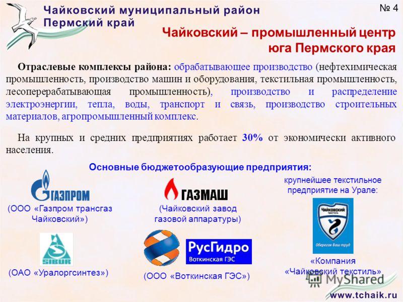 Отраслевые комплексы района: обрабатывающее производство (нефтехимическая промышленность, производство машин и оборудования, текстильная промышленность, лесоперерабатывающая промышленность), производство и распределение электроэнергии, тепла, воды, т