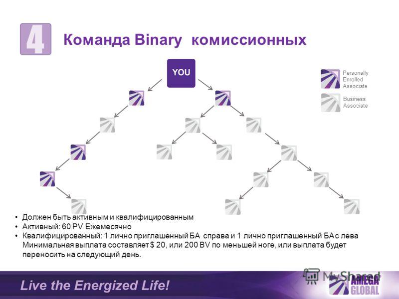 Personally Enrolled Associate Business Associate Команда Binary комиссионных Должен быть активным и квалифицированным Активный: 60 PV Ежемесячно Квалифицированный: 1 лично приглашенный БA справа и 1 лично приглашенный БA c лева Минимальная выплата со