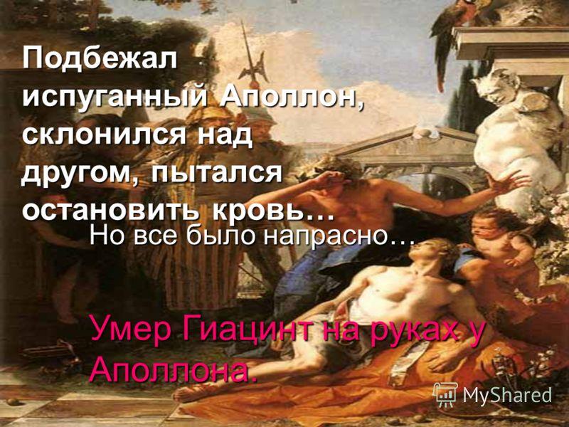 Подбежал испуганный Аполлон, склонился над другом, пытался остановить кровь… Но все было напрасно… Умер Гиацинт на руках у Аполлона.