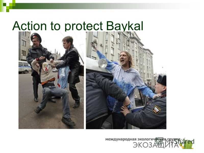 Action to protect Baykal