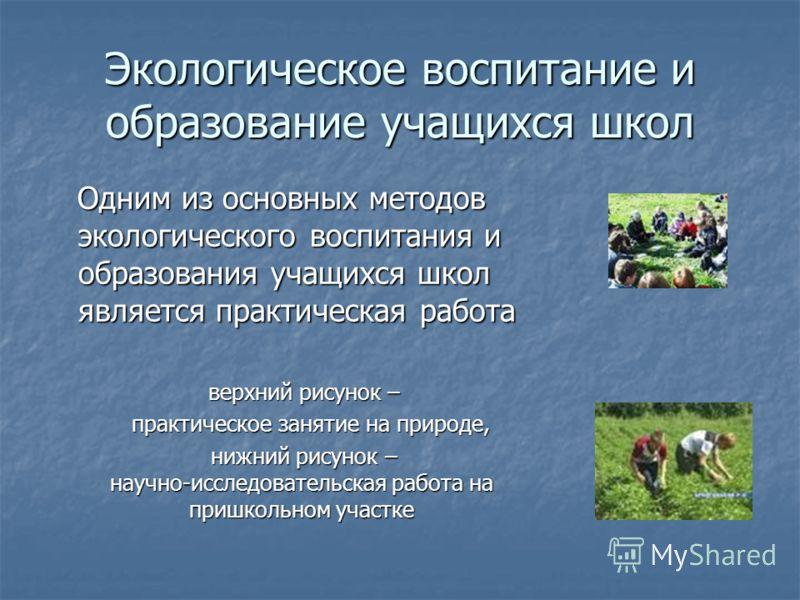 Экологическое воспитание и образование учащихся школ Одним из основных методов экологического воспитания и образования учащихся школ является практическая работа Одним из основных методов экологического воспитания и образования учащихся школ является