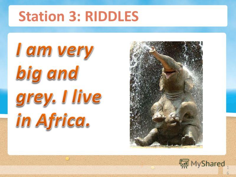 Station 3: RIDDLES 16