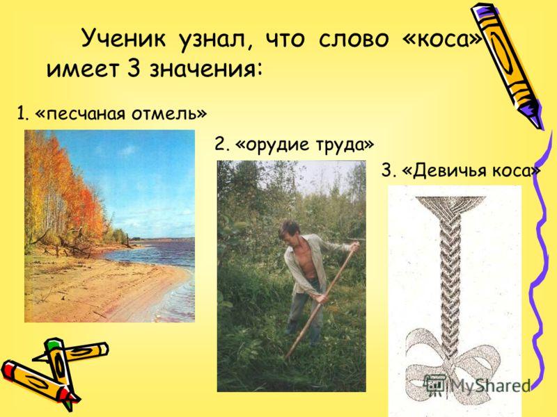 Ученик узнал, что слово «коса» имеет 3 значения: 1. «песчаная отмель» 2. «орудие труда» 3. «Девичья коса»