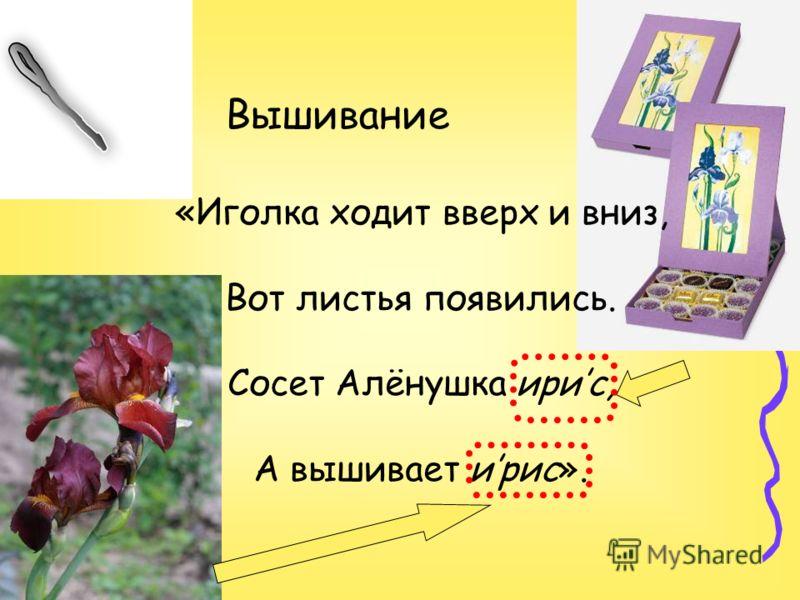 Вышивание «Иголка ходит вверх и вниз, Вот листья появились. Сосет Алёнушка ирис, А вышивает ирис».
