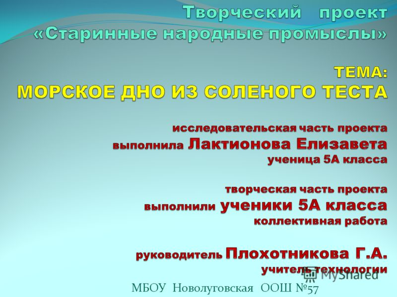 МБОУ Новолуговская ООШ 57