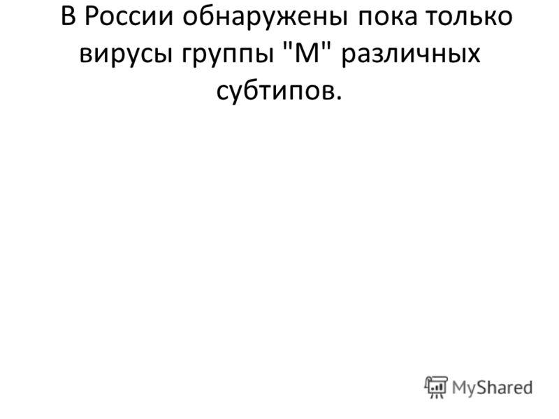 В России обнаружены пока только вирусы группы М различных субтипов.