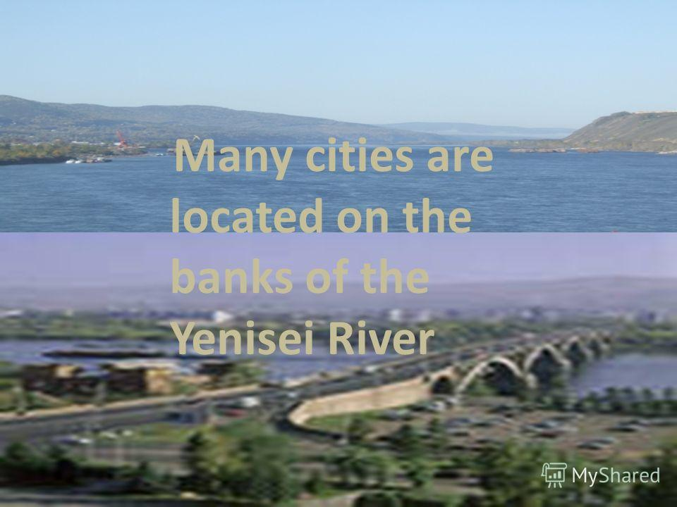 Many cities are located on the banks of the Yenisei River