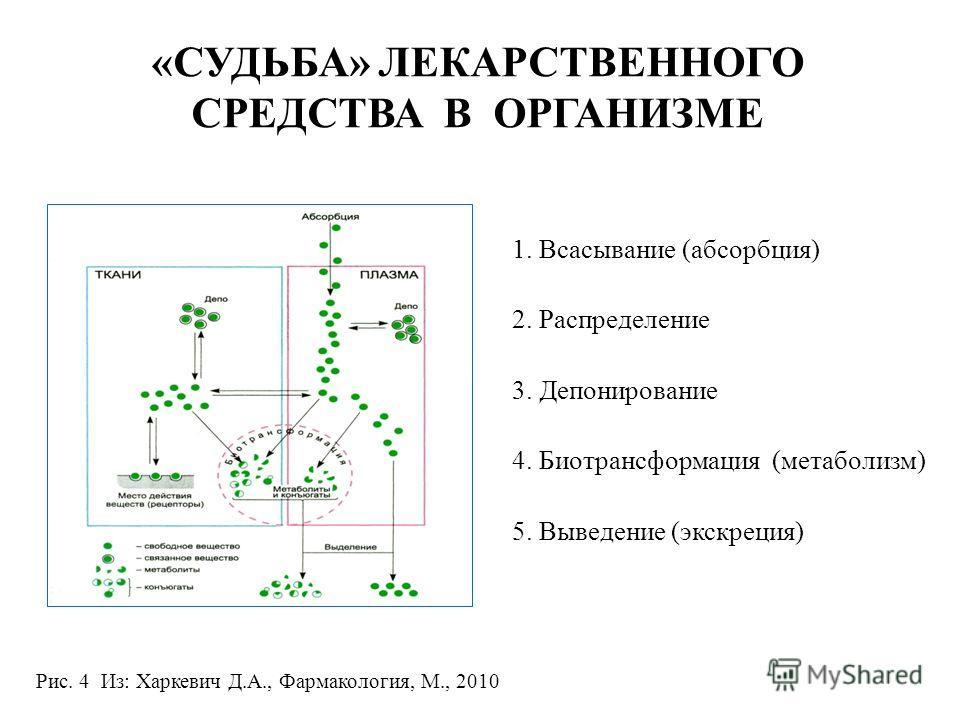 «СУДЬБА» ЛЕКАРСТВЕННОГО СРЕДСТВА В ОРГАНИЗМЕ 1. Всасывание (абсорбция) 2. Распределение 3. Депонирование 4. Биотрансформация (метаболизм) 5. Выведение (экскреция) Рис. 4 Из: Харкевич Д.А., Фармакология, М., 2010