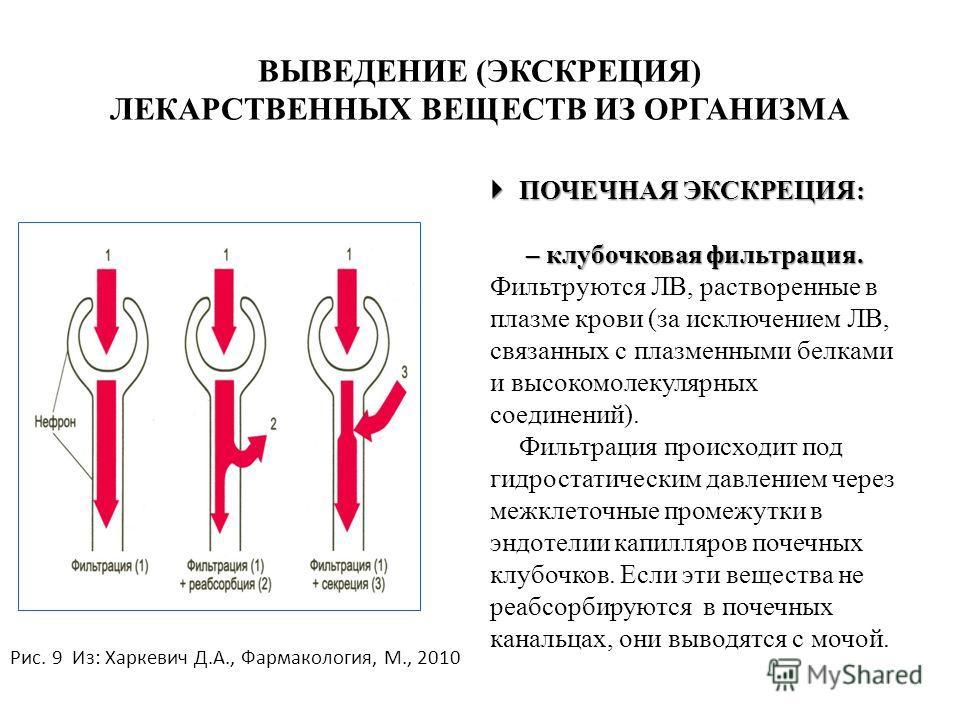 ВЫВЕДЕНИЕ (ЭКСКРЕЦИЯ) ЛЕКАРСТВЕННЫХ ВЕЩЕСТВ ИЗ ОРГАНИЗМА ПОЧЕЧНАЯ ЭКСКРЕЦИЯ: ПОЧЕЧНАЯ ЭКСКРЕЦИЯ: – клубочковая фильтрация. – клубочковая фильтрация. Фильтруются ЛВ, растворенные в плазме крови (за исключением ЛВ, связанных с плазменными белками и выс