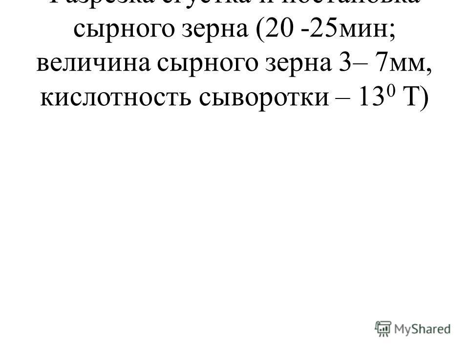 Разрезка сгустка и постановка сырного зерна (20 -25мин; величина сырного зерна 3– 7мм, кислотность сыворотки – 13 0 Т)