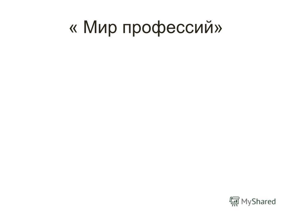 « Мир профессий»