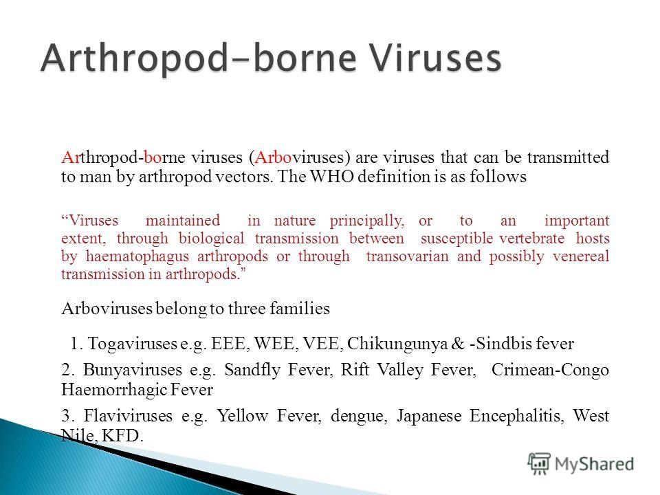Arthropod borne virus