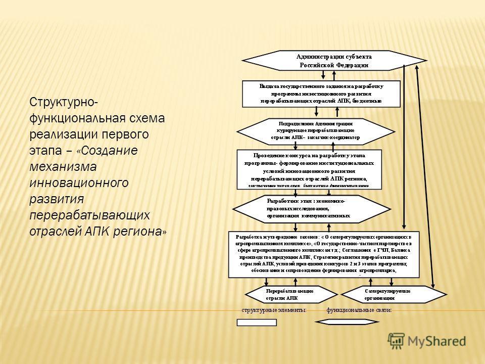 Структурно- функциональная схема реализации первого этапа – «Создание механизма инновационного развития перерабатывающих отраслей АПК региона»