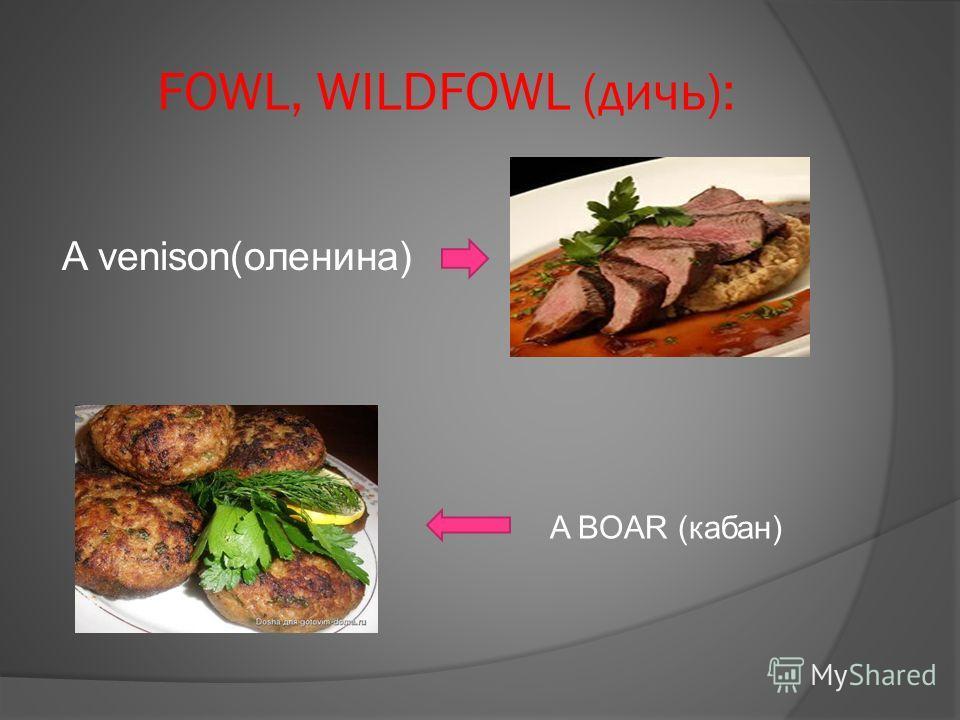 FOWL, WILDFOWL (дичь): A venison(оленина) A BOAR (кабан)
