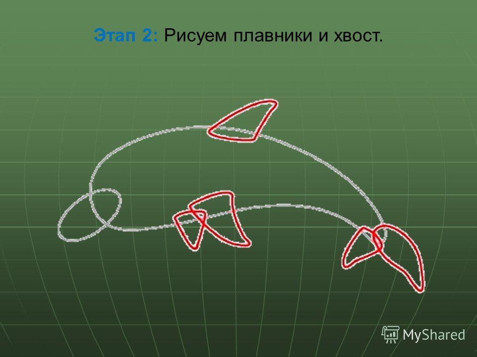 Этап 2: Рисуем плавники и хвост.