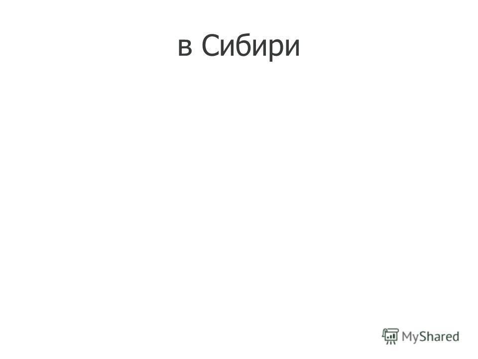 в Сибири