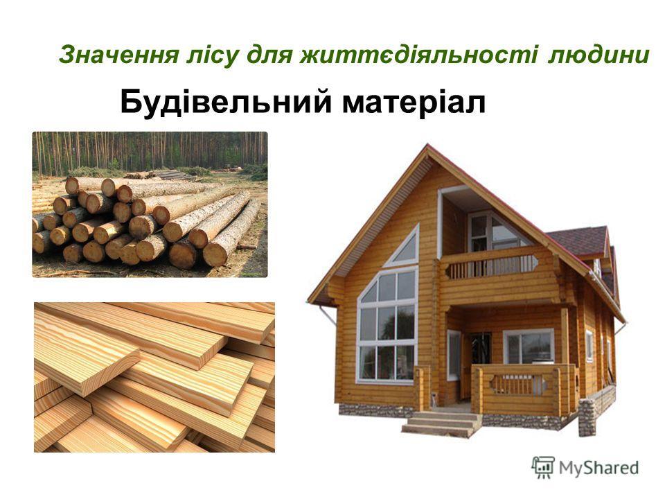 Будівельний матеріал Значення лісу для життєдіяльності людини
