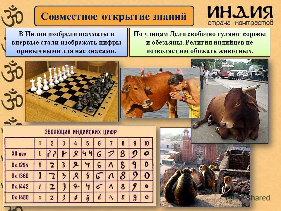 Совместное открытие знаний В Индии изобрели шахматы и впервые стали изображать цифры привычными для нас знаками. По улицам Дели свободно гуляют коровы и обезьяны. Религия индийцев не позволяет им обижать животных.