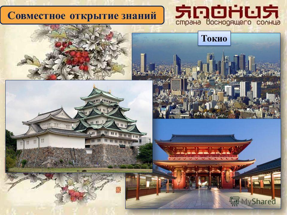 Совместное открытие знаний Токио Токио