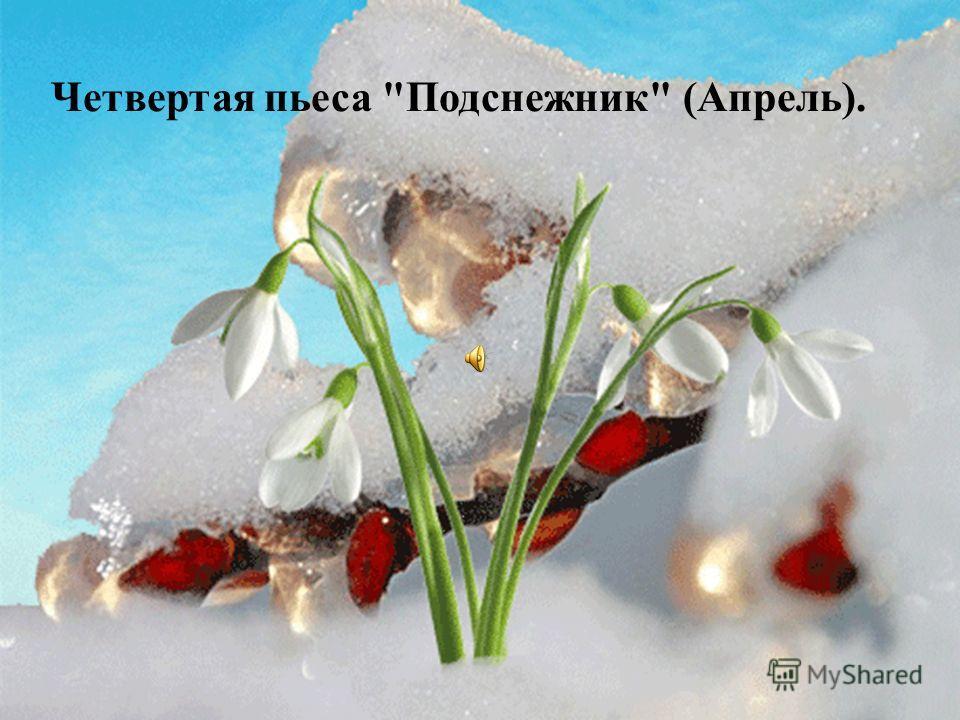Четвертая пьеса Подснежник (Апрель).