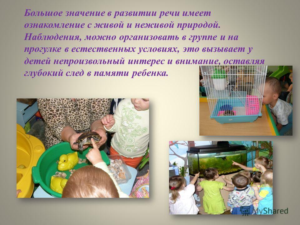 В качестве наглядных средств выступают живые и неживые объекты (предметы), игрушки, изображения предметов, игрушек на картинках, художественное слово.