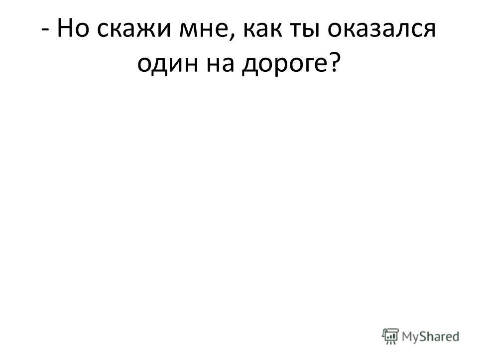 - Но скажи мне, как ты оказался один на дороге?