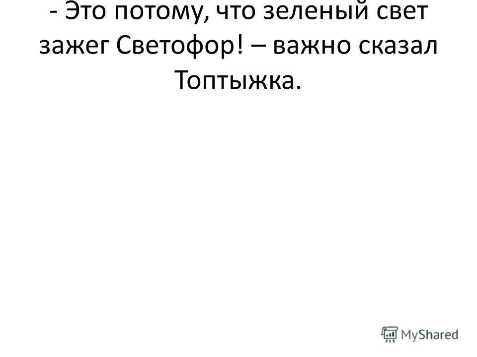 - Это потому, что зеленый свет зажег Светофор! – важно сказал Топтыжка.