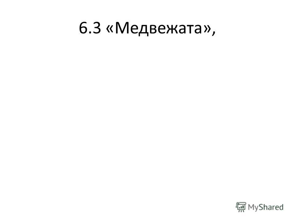 6.3 «Медвежата»,