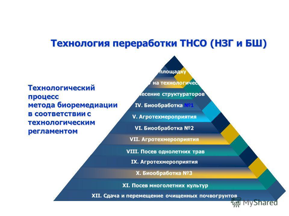 Технологический процесс метода биоремедиации в соответствии с технологическим регламентом Технология переработки ТНСО (НЗГ и БШ) I. Прием на площадку ТНСО II. Размещение ТНСО на технологической площадке III. Внесение структураторов IV. Биообработка 1