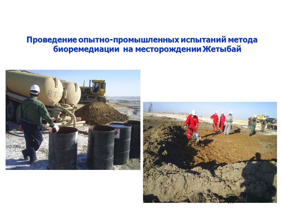 Проведение опытно-промышленных испытаний метода биоремедиации на месторождении Жетыбай