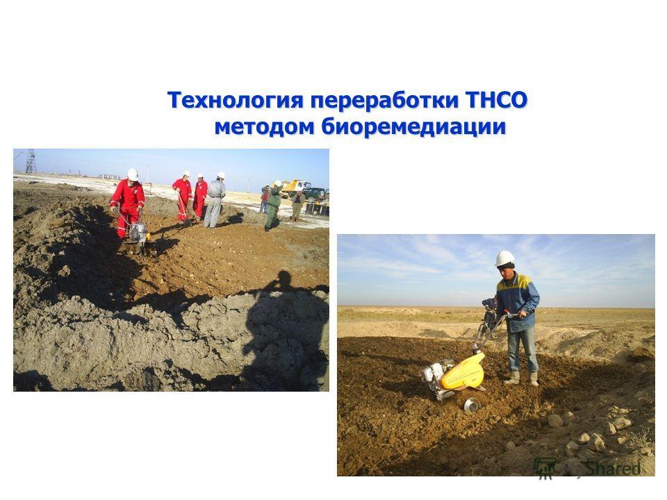 Технология переработки ТНСО методом биоремедиации