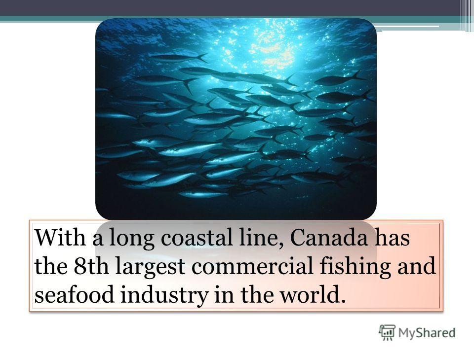 With a long coastal line, Canada has the 8th largest commercial fishing and seafood industry in the world.
