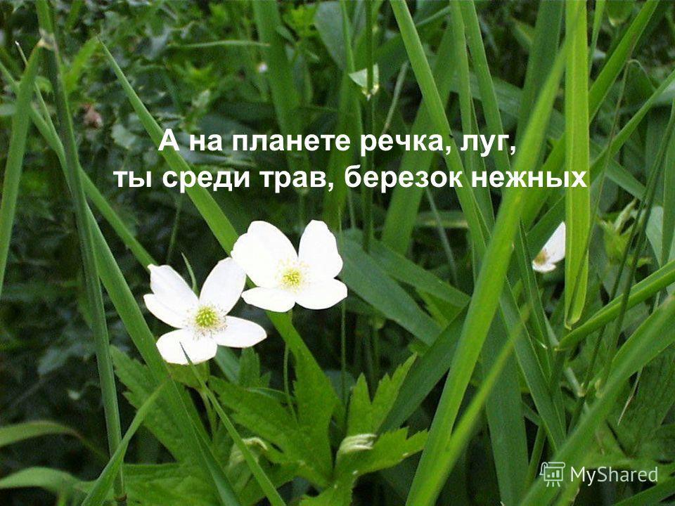 А на планете речка, луг, ты среди трав, березок нежных