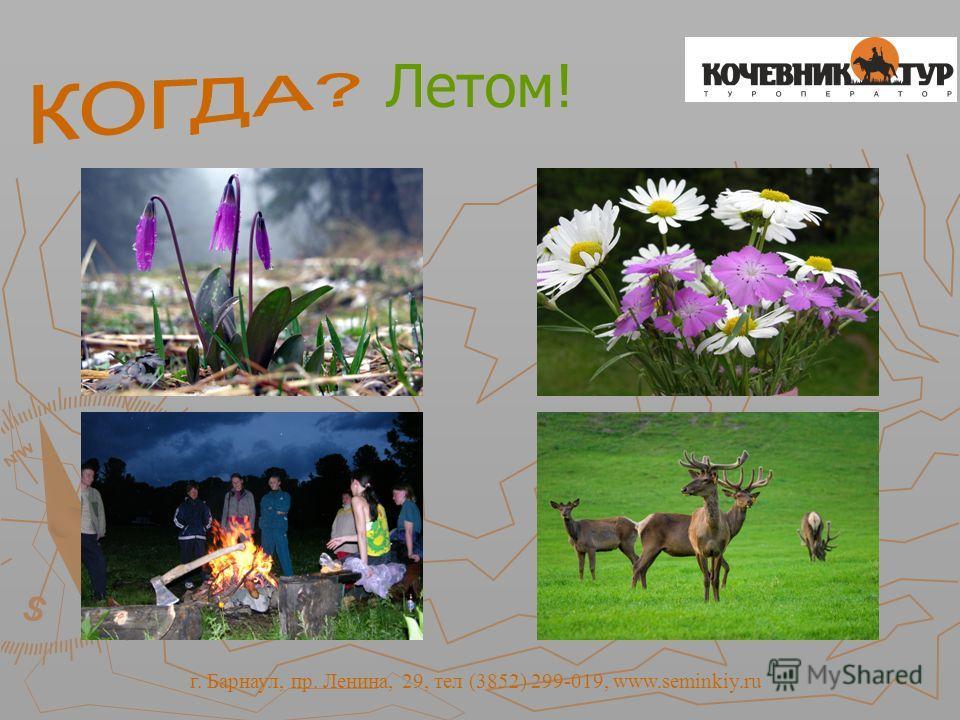 Летом! г. Барнаул, пр. Ленина, 29, тел (3852) 299-019, www.seminkiy.ru